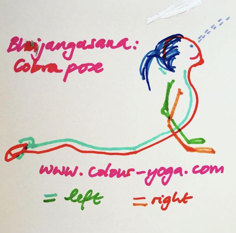 Cobra Pose Yoga - Bhujangasana - Sketch-Colour Yoga UK - #colouryogaukstickpic
